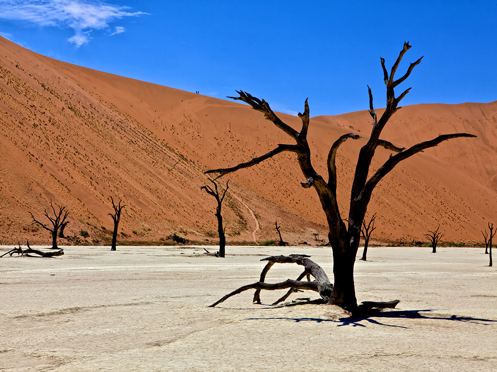 a voir en namibie