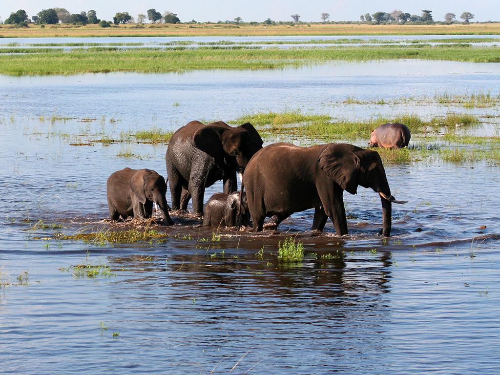 A voir en Tanzanie