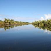 Le sud de Madagascar : un vivier de curiosités à explorer