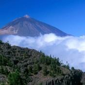 Les meilleurs endroits à visiter à Tenerife