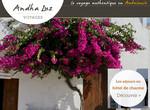 Trouver un hébergement de luxe à Andalousie