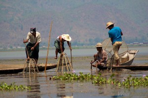 myanmar-lac-inle1