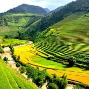 Vietnam, pays qui fait rêver