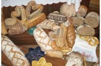 Un weekend touristique et gastronomique en Alsace