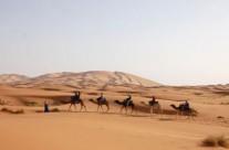 Excitantes choses à faire durant un tour dans le désert du Maroc