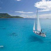 Quelles îles choisir pour une croisière plongée : Tuamotu ou îles sous le vent ?