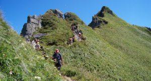 Choisir les montagnes auvergnates pour mettre l'équipe de boulot au vert