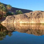 Découvrez les trésors naturels et historiques dont regorge le Maroc avec Morocco Ecotours