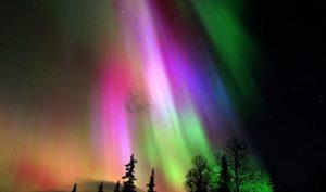 laponie-boreale