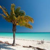 Pour des vacances ensoleillées sur la terre cubaine