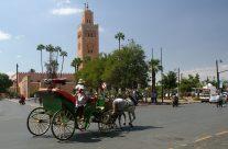 Marrakech est la destination préférée de nombreux touristes