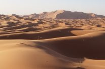 A partir d'Agadir, louez dans une agence location 4×4 agadir aéroport  et partez à l'aventure.