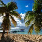 Les meilleurs sites à découvrir lors d'une randonnée en Martinique