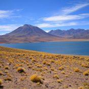 Explorer le Chili avec Atacama voyage