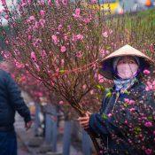 Les dates de la fête du Têt 2018 au Vietnam – Meilleurs conseils pour un voyage réussi