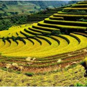 Les destinations idéales en Mai au Vietnam