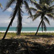 Louer une voiture : la solution pour visiter la Martinique
