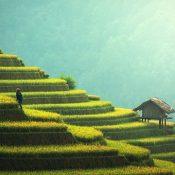 La Thaïlande, le paradis des touristes