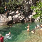 Partir en colonie de vacances pour découvrir la nature