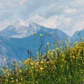 Vacances d'été à la montagne: les meilleures destinations