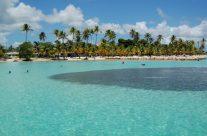 Partir en Guadeloupe au bon moment