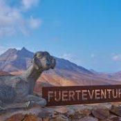 4 visites incontournables à faire et à voir à Fuerteventura