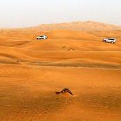 Astuces pour découvrir Dubaï moins cher